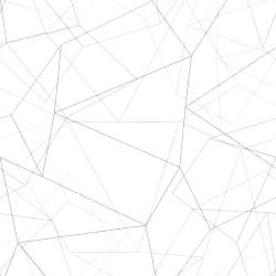 poly-pattern for stronger.tech logo