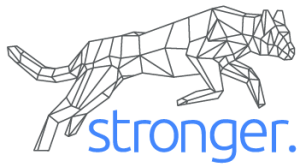 Stronger.Tech Logo