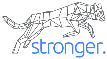 Stronger International Inc.